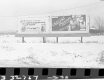 Billboards and Snow